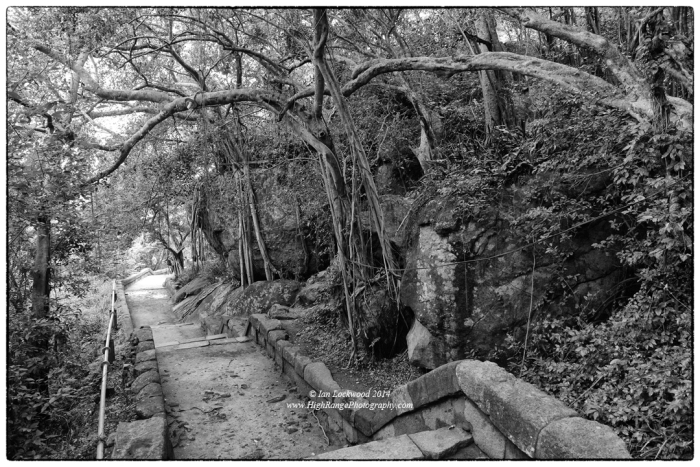 Steps amidst dry evergreen forest at Thiriyai. This is a sublime, little visited Buddhist sanctuary with interesting historical links to the Tamil communities  that live in the area.