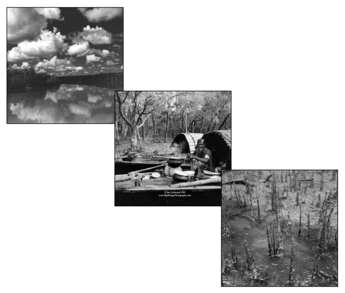 Collage of 6x6 format black & white images from visits to the Sunderban in the late 1990s. Taken from my www.highrangephotography.com site.