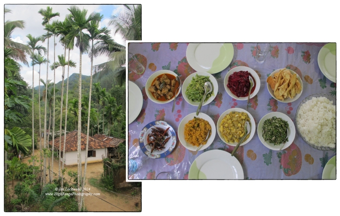 Chandra's house in Kudawa, overshadowed by the forests of Sinharaja (and Moulawella peak). Traditional lunch prepared by Martin's daughter in Kudawa.