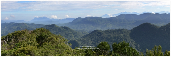 Looking north from Moulawella's 760 meter peak to the Central Highlands. Sri Pada or Adam's Peak (2,243 meters) is a point on the distant blue ridge to the right of the center.