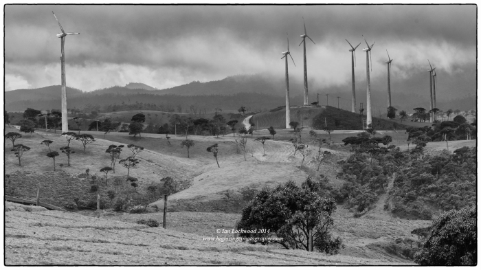 Looking north at newly installed wind turbines installed at the Ambawella farms with Horton Plains rising into the mist in the background. Sri Pada as seen from the western edge of Horton Plains National Park. The turbines were not in place when I last visited and made a long panoramic images that was features in the Si Pada: Paths to the Peak exhibition.