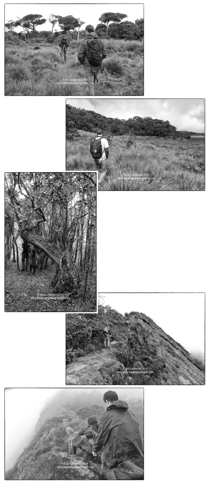 Snapshots in silver, black & white from the hike up to Kirigalpotha peak.