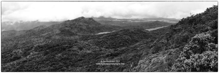 Looking north from Kirigalpotha over the cloud forest and patanas of Horton Plains National Park.