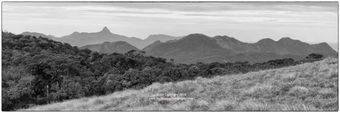 Sri Pada as seen from the western edge of Horton Plains National Park.