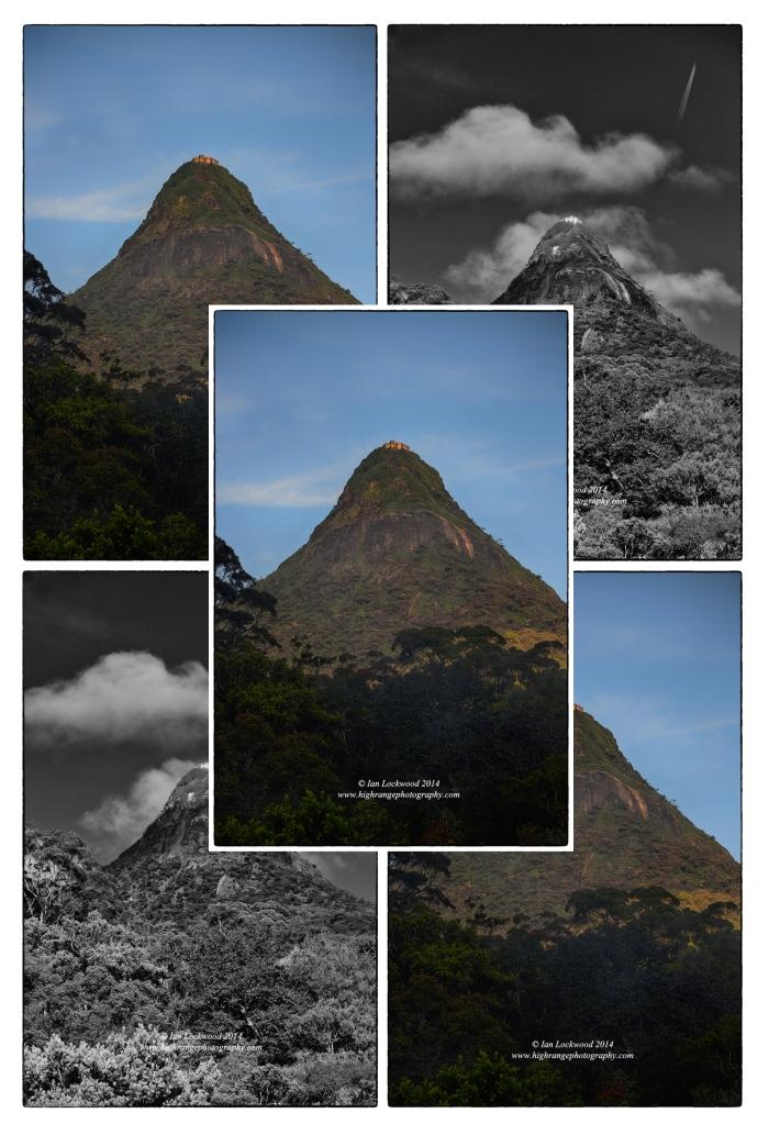 Sri Pada Collage 2014