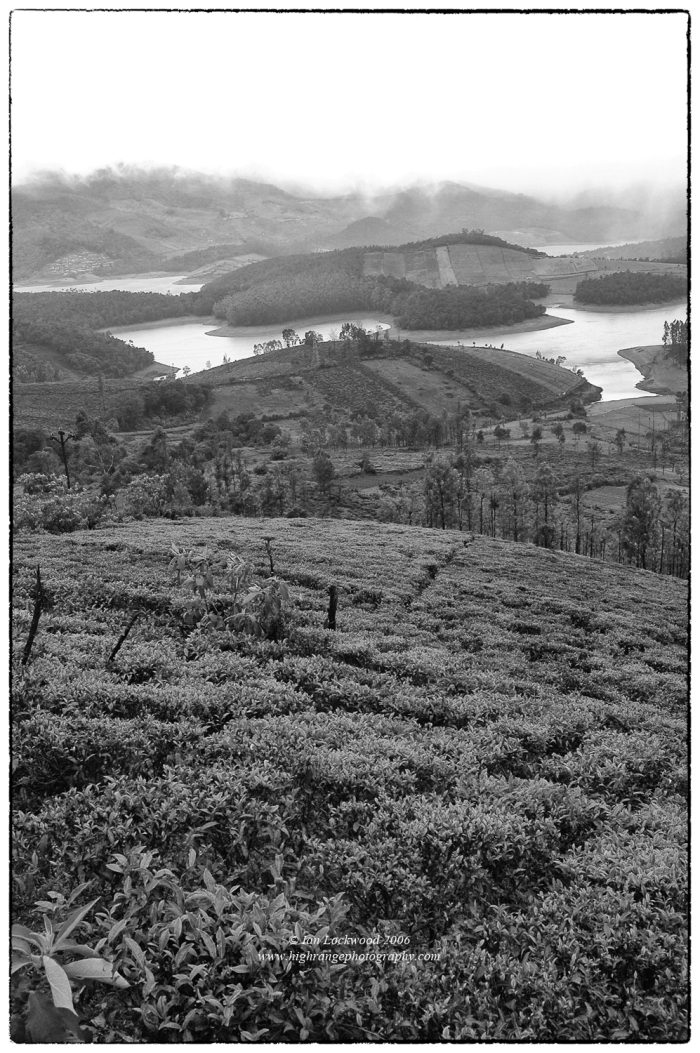 Emerald Reservoir, one of several large hydroelectric projects in the upper Nilgiri Hills. Tea is grown in the foreground, where as further back there are large non-native timber (eucalyptus) plantations. The monsoon mists hide the protected grasslands and sholas of Mukkurthy National park.