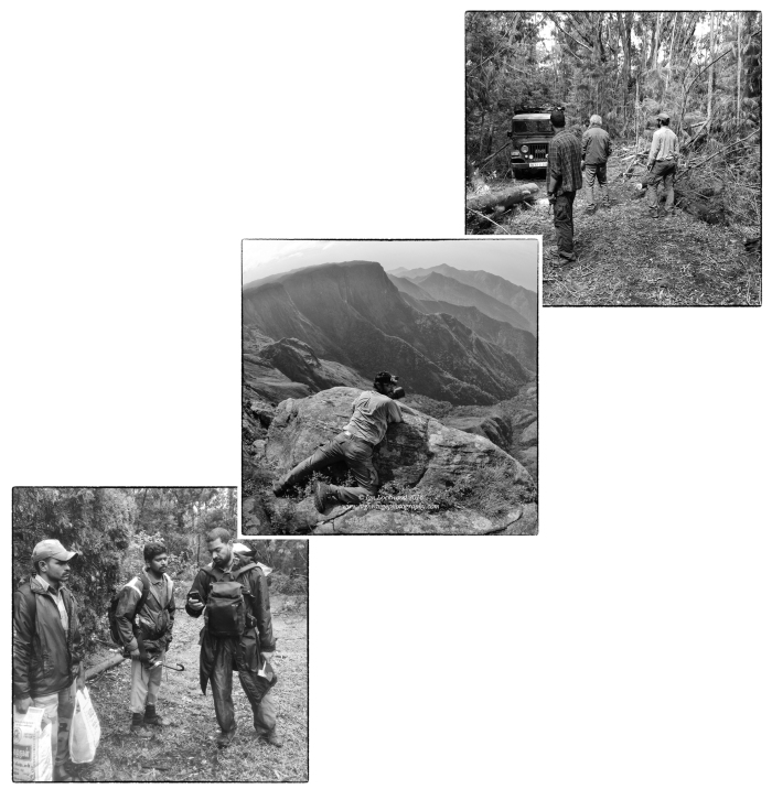 From top left to bottom right: Cutting through fallen pine trees on the road to Katrikodai from Berijam. Prasen inspecting steep slopes and remnant grasslands at Prayer Point near Marion Shola. Danesh with forest guards logging a point on Mapit.