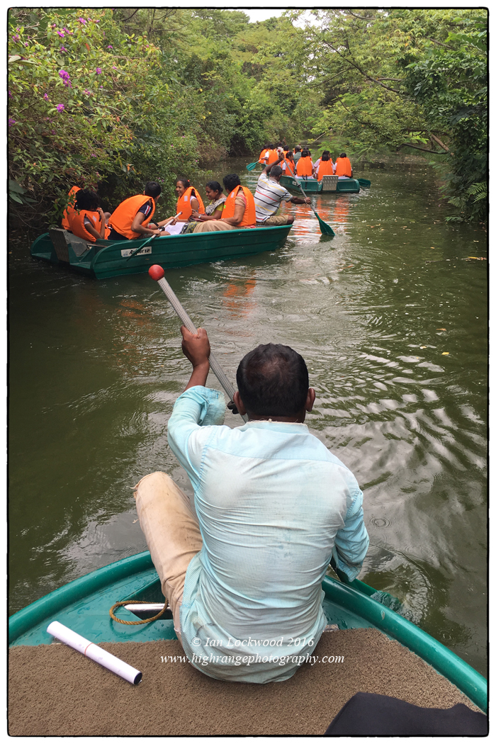 School students navigating the narrow canals of the newly designated Thalawathugoda Biodiversity Park as part of the Urban Fishing Cat workshops in September 2016.