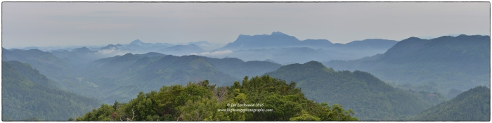View looking west from Moulawella peak. On the final day we do a hike up to this point to give the class an appreciation for the Sinharaja area and the effort that has been made to protect its spectacular rainforests.