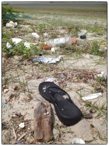Trash on the Mannar beach- a significant issue...