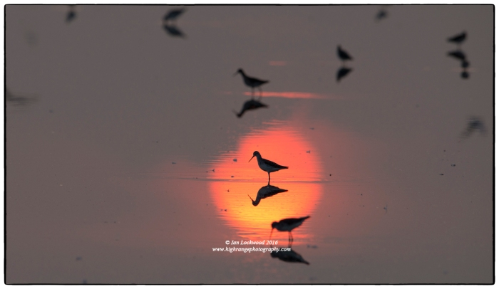Sunrise at Vankalai Bird Sanctuary (January 2016)