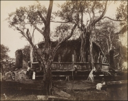 Watadage or Vatagae at Polonnaruwa. Taken @ 1870. by Joseph Lawton 1870 (V&A Collection)