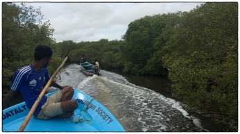 Vidataltivu mangrove visit.