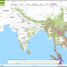 Global Forest Watch screen grab of South and South East Asia