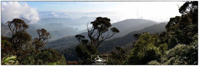 View north to Maskeliya from the slopes of Sri Pada through cloud forest @ 1800 meters.