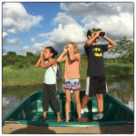 OSC kids on the lookout for birds, monitors and crocs at Thalawathugoda (Diyasaru) Biodiversity Park.