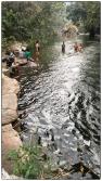 Belihuloya stream swim