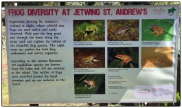 Frog poster at Jetwings St. Andrew's wetlands.