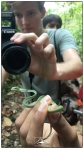 Dominic photographing a vine snake (Ahaetulla nasuta) on our way up to Martin's on the first day.