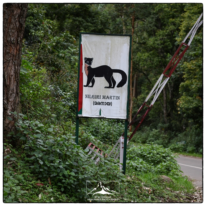 Nilgiri Marten sign at Pampadum Shola National Park entrance.