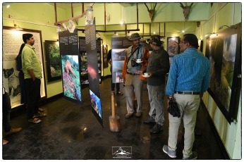 Vivek, Anil (the artist behind many of the images), Karunakaran and others explore the Rajamalai interpretation center in Eravikulam National Park.