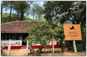 NCF's Anamalais Nature Information Centre is an exemplar interpretation center promoting knowledge, inquiry and conservation in the Western Ghats.