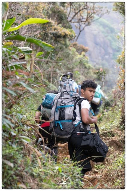 DP1 student Rizqi on the forest hike up to Sri Pada. We had not yet joined the main concrete steps and were enjoying fine views of montane forest. (January 2020)
