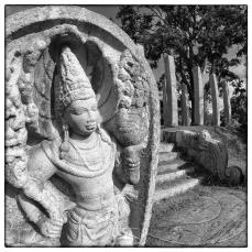 Naga guard stones and simple moonstone in ruins south of Thuparama, Anuradhapura.